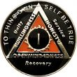 AA Black and Orange with Chrome SOS Anniversary Coin